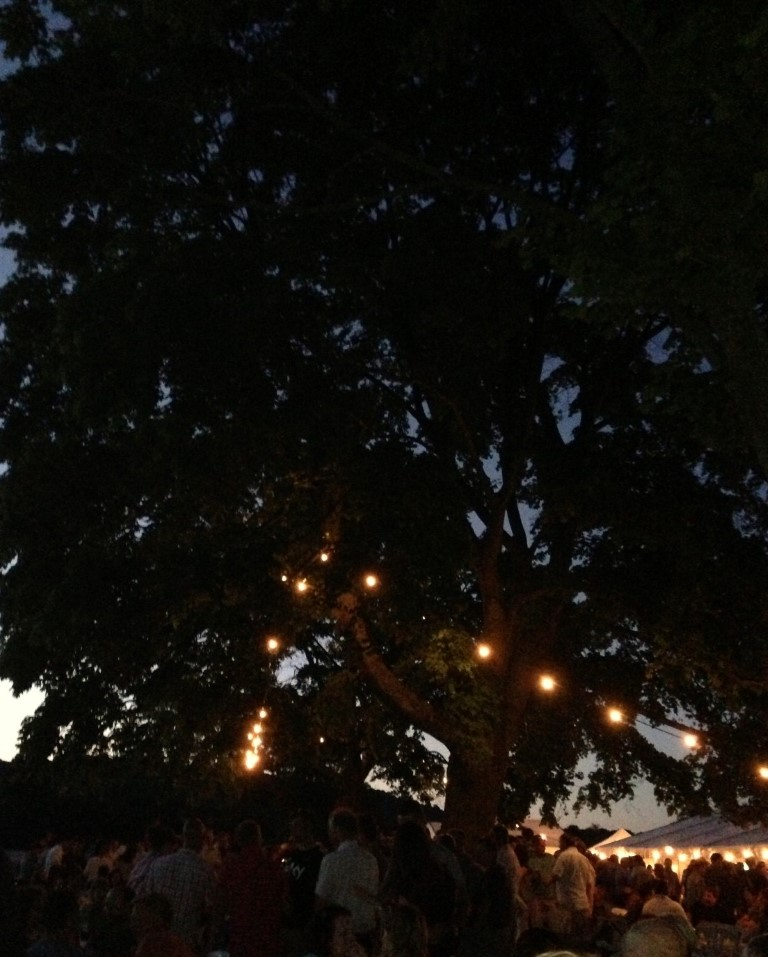 Caterham Tree Surgeons: Oxted & Limpsfield Beer Festival